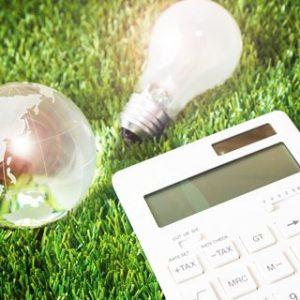 芝生の上の電球と水晶玉と電卓の小さい画像
