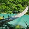 木々に囲まれた青い川にかかる吊り橋