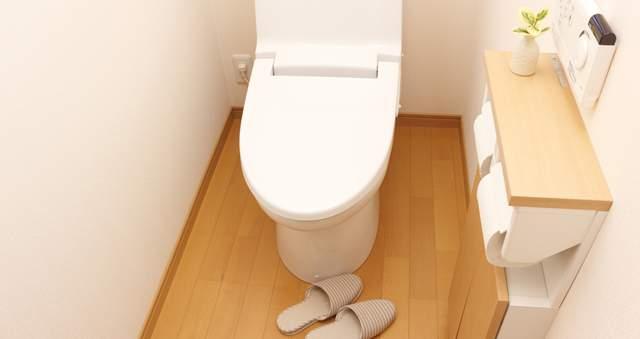 スリッパが置かれてトイレットペーパーが2つ備え付けられる家庭のトイレ
