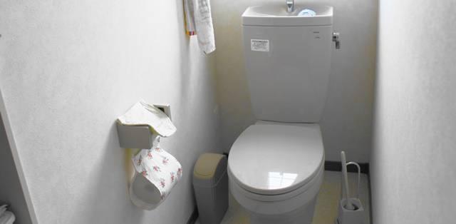 家庭のキレイなトイレの全体像。ペーパーホルダーにはカバーがつけられ、トイレブラシ、汚物入れなども用意されている