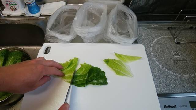 白菜の葉を適当な大きさにカット