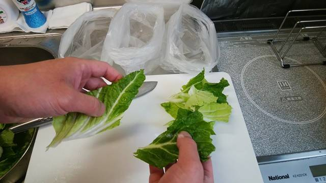 白菜の葉を手でちぎったけどわりとキレイな形になった