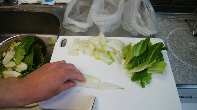 白菜の芯の先っぽを切り落とす
