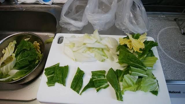 虫食いがある白菜の葉一枚を、数カットに切り分けた状態