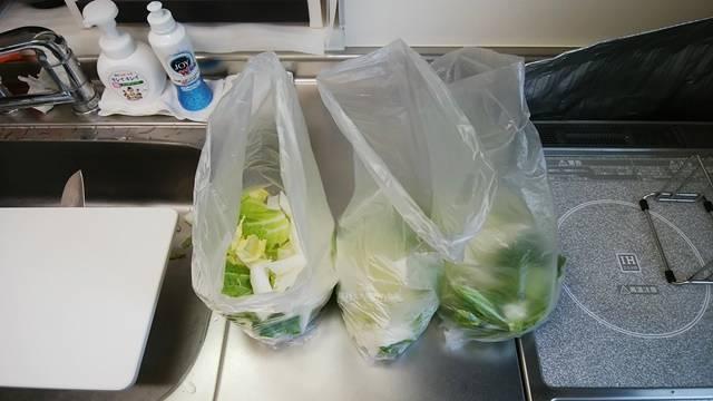 白菜のざく切りをアイラップにつめた状態