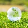 草の上にガラスの地球儀が置かれているアップ